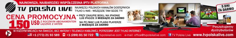 Polska Telewizja Internetowa